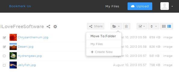 Shared upload managing files