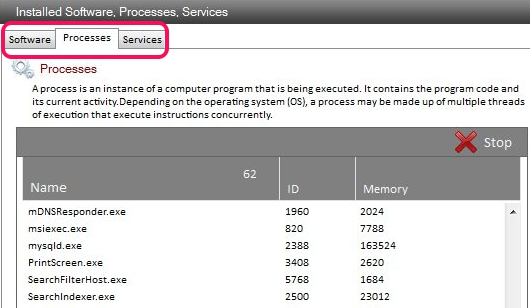 Sys Information- Installed Software, Processes, Services