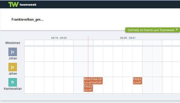 TeamWeek default window