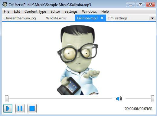 Universal File Editor playing music