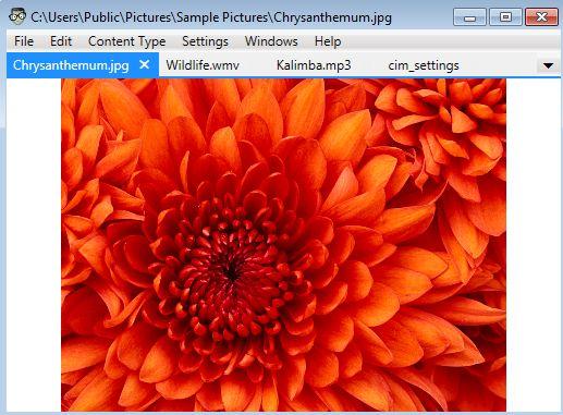 Universal File Editor viewing image