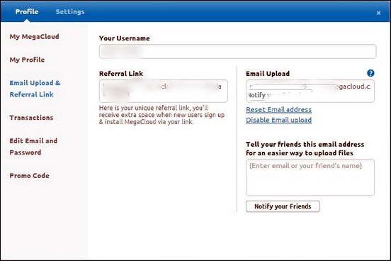 MegaCloud - Email Settings