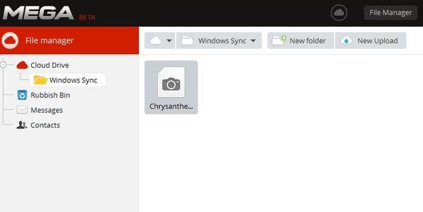 MegaSync uploaded files