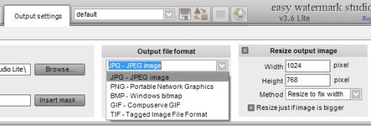 Easy Watermark Studio Lite- output settings