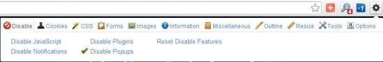 Free Web Developer Chrome Extention - Web Developer - Interface