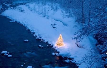 Holiday Lights-free Christmas theme for windows 7-wallpaper