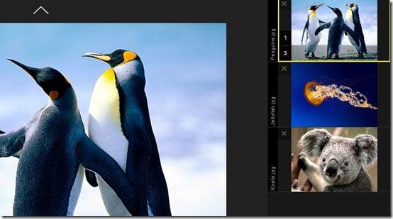 Live-online photo sharing-upload images