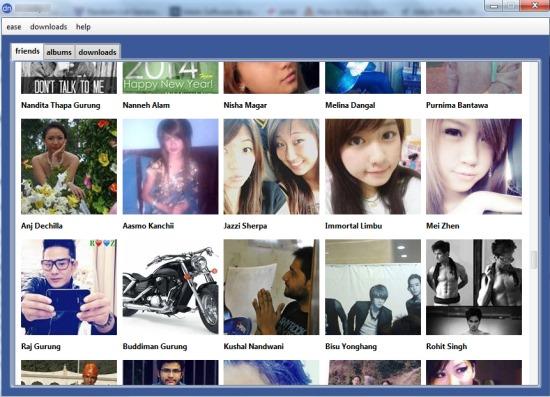 Facebook Albums Downloader- interface