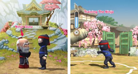 Training and Ninja Guru