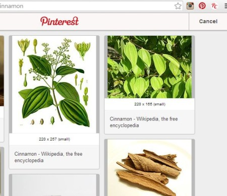pinterest extensions chrome pin it to