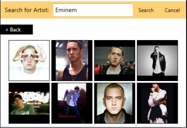 sample photos of artist