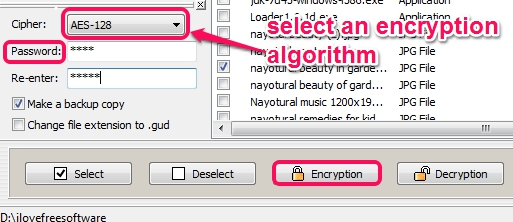 select an encryption algorithm and encrypt files