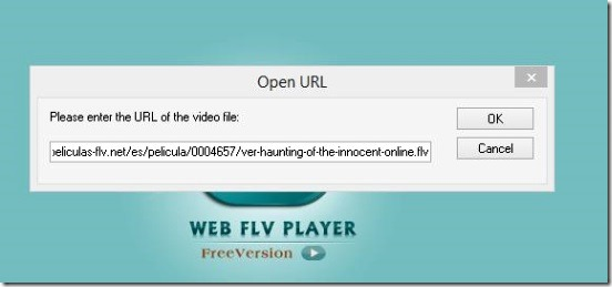 AnvSoft Web FLV Player - opening web flv video