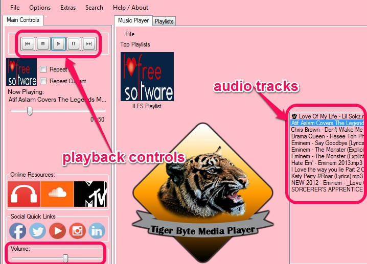 Tiger Byte Music Player