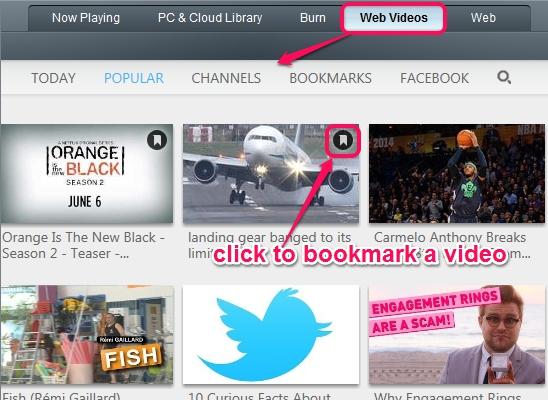Web Videos tab