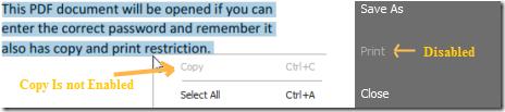 Free PDF Protector-NoCopy