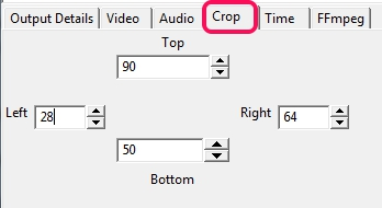 crop output video size