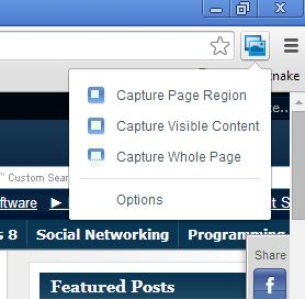 screenshot page entire google chrome-6