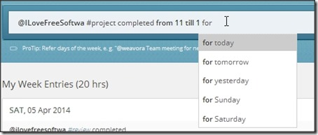 Everhour Using-for