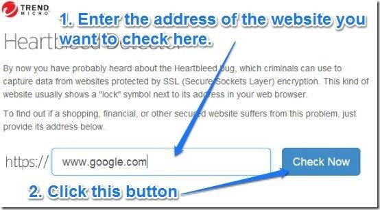 Heatbleed detector webapp UI