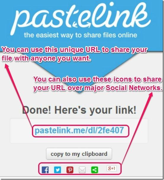 Pastelink Shared URL