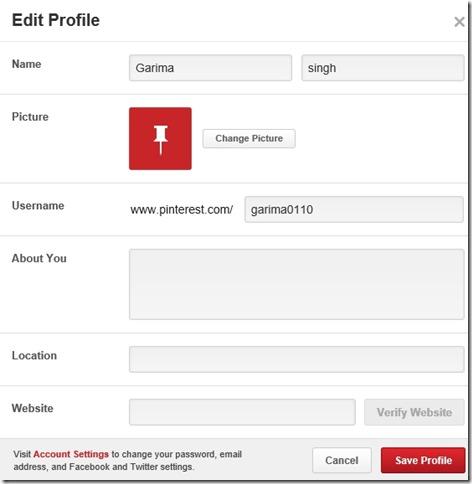 Pinterest Lite- Edit Profile options