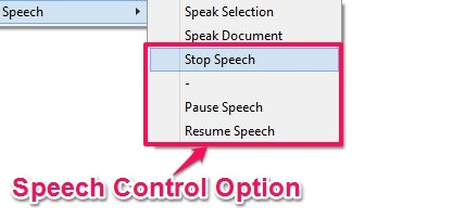Speech - Control Option