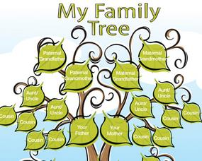 online family tree-icon