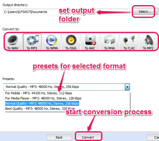 select output format and preset