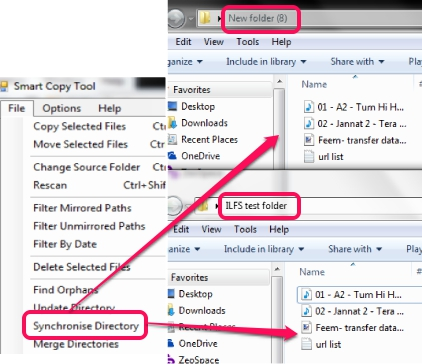 synchronize directory