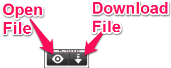 rollApp Chrome Extension file icon