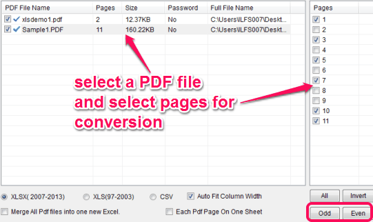 select PDF pages for conversion