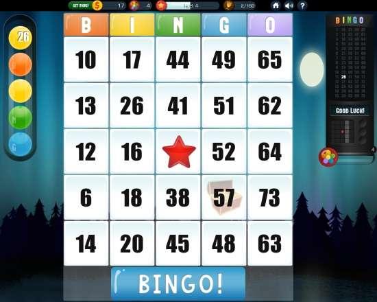 Absolute Bingo-One Card