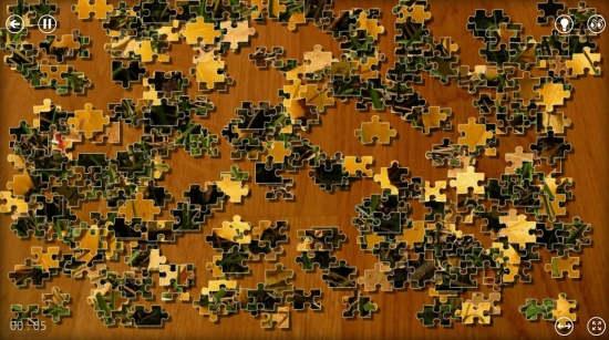 Puzzle Frenzy