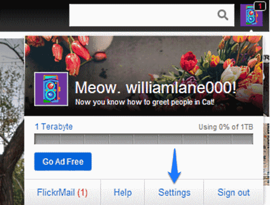 flickr settings access