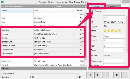 Waf Music Manager-Edit Metadata