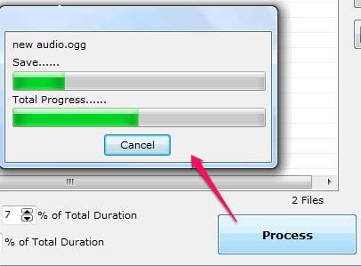 process audio files