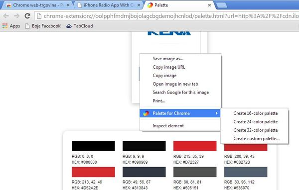 color palette extensions google chrome 1