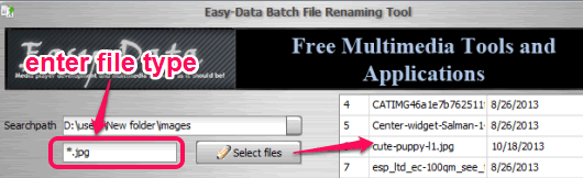 enter file type and fetch list of those files
