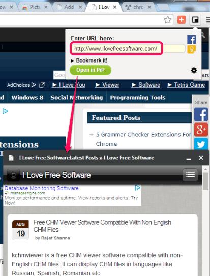 open a website in panel window