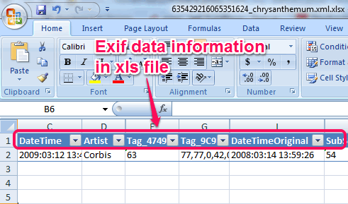 xls file of exif data