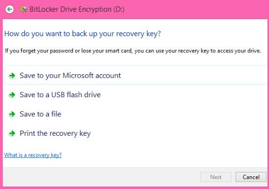 BitLocker Drive Encryption-Recovery Key