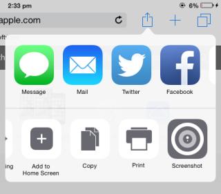 Choose Screenshot option