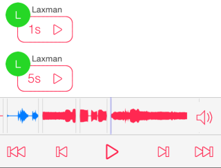 Media Controls for Voice Messages