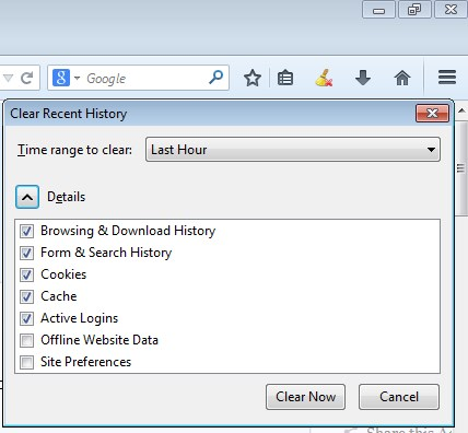 browsing history cleaner addons firefox 1