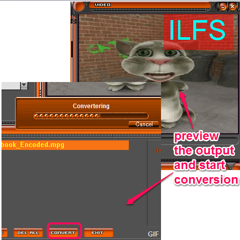 preview and start conversion