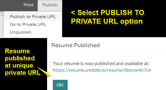 resume published with URL