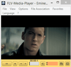 Free flv media player