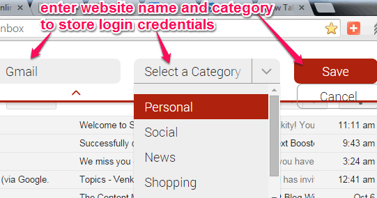 enter website name and choose category to store login credentials