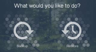 Choose the Backup Option